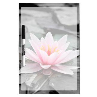 Beautiful Pink Lotus Flower Waterlily Zen Art Dry Erase Board