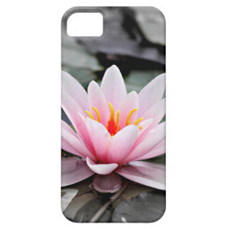 Beautiful Pink Lotus Flower Waterlily Zen Art iPhone 5 Case