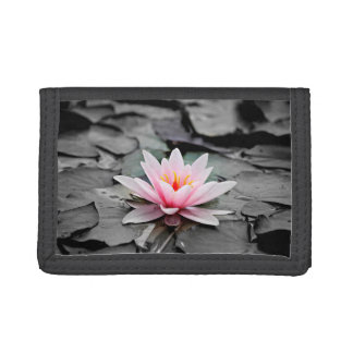 Beautiful Pink Lotus Flower Waterlily Zen Art Trifold Wallet