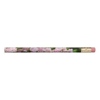 Beautiful Pink Mountain Laurel Pencils
