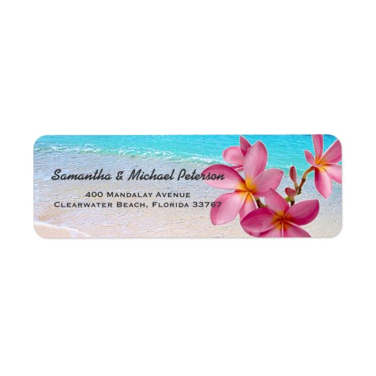 Beautiful Pink Plumeria Flowers Beach