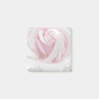 Beautiful Pink Rose Floral Post-it Notes