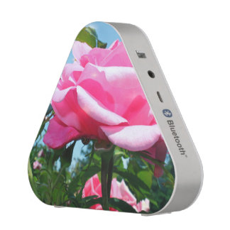 beautiful pink rose flower. floral photo art. speaker
