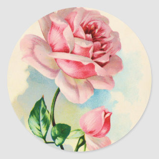 Beautiful Pink Rose Flower Round Sticker