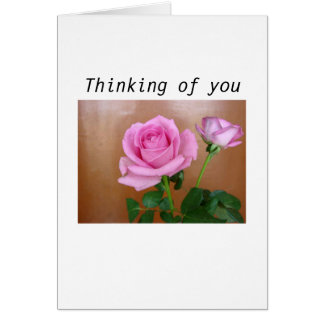 Beautiful Pink Rose Thinking of You Card