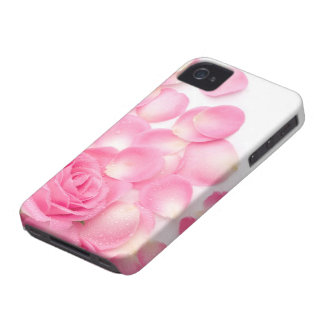 Beautiful Pink Rose with Scattered Petals iPhone 4 Case-Mate Cases