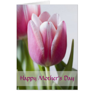 Beautiful Pink Tulip, Happy Mother's Day Greeting Card