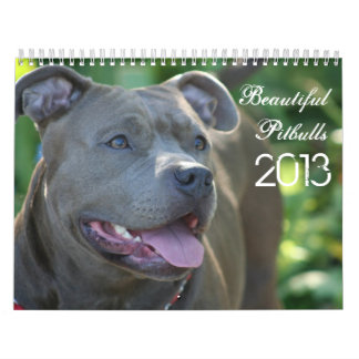Beautiful Pitbulls 2013 Dog Calendar