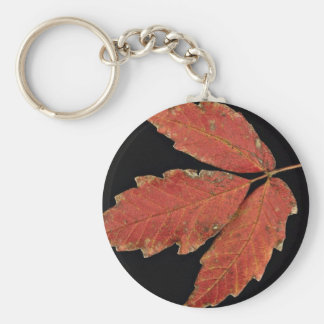 Beautiful Poison Ivy leaves Keychain
