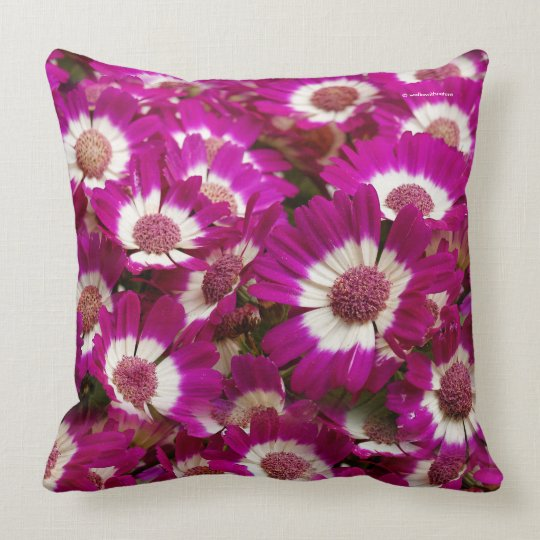 Beautiful Purple Cineraria Flowers Throw Pillow