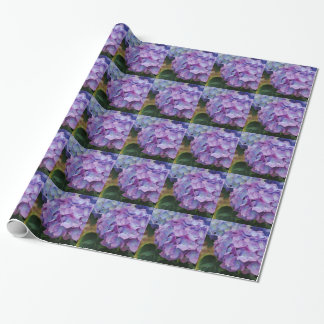 Beautiful, purple hydrangea blooms, gift wrap. wrapping paper