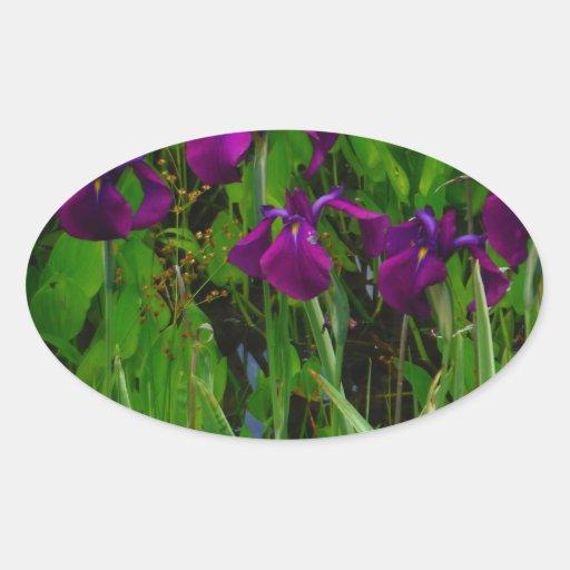 Beautiful Purple Iris Stickers