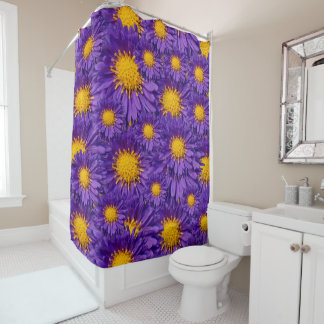Beautiful Purple Michaelmas Daisies