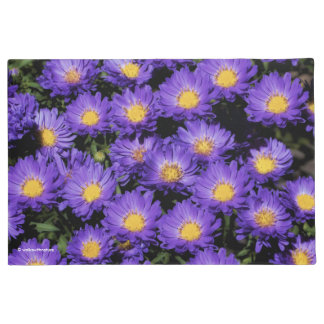 Beautiful Purple Michaelmas Daisies Doormat