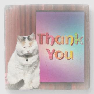 Beautiful Pussycat Says ThankYou on Marble Coaster