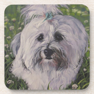 Beautiful Realistic Havanese Dog Art Painting Drink Coasters