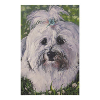 Beautiful Realistic Havanese Dog Art Painting Stationery