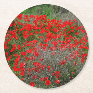 Beautiful Red Anemone Flowers In A Spring Field Round Paper Coaster