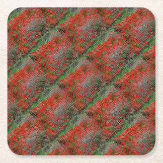 Beautiful Red Anemone Flowers In A Spring Field Square Paper Coaster