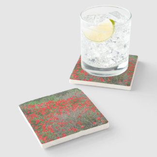 Beautiful Red Anemone Flowers In A Spring Field Stone Coaster