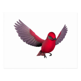 Beautiful Red Bird Postcard