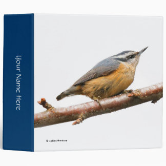 Beautiful Red-Breasted Nuthatch on a Branch Binders