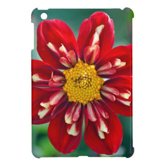 Beautiful red dahlia print ipad case