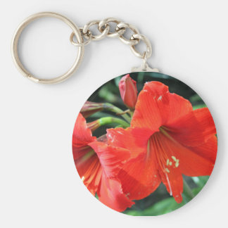 Beautiful Red Flower Photograph Basic Round Button Keychain