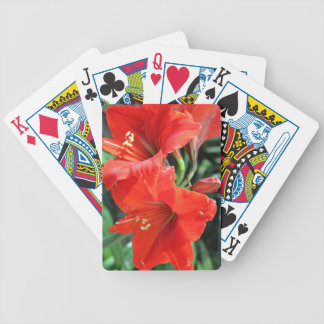 Beautiful Red Flower Photograph Bicycle Playing Cards