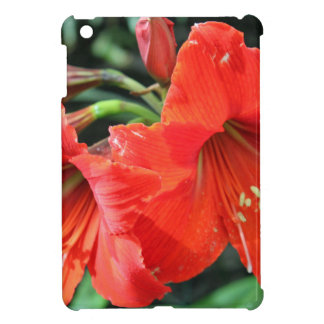 Beautiful Red Flower Photograph Case For The iPad Mini