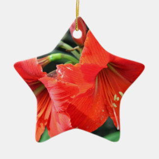 Beautiful Red Flower Photograph Ceramic Ornament