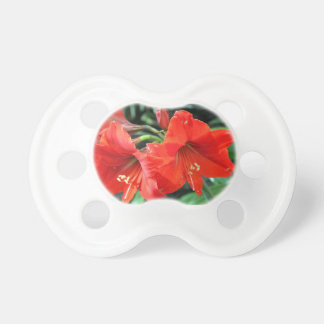 Beautiful Red Flower Photograph Pacifier