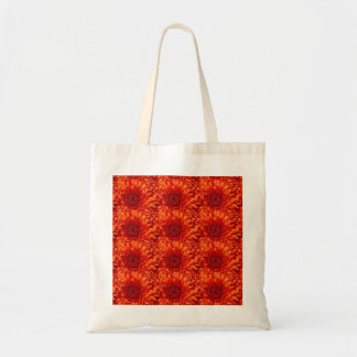 Beautiful Red Flowered Tote Bag w/ matching blanky