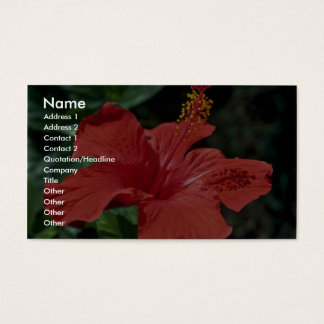 Beautiful Red Hibiscus flower Business Card