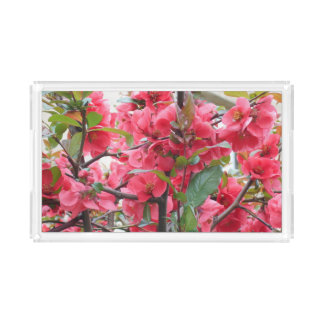 Beautiful Red Japanese Quince Acrylic Tray