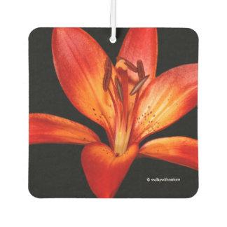 Beautiful Red Orange Asiatic Lily Gran Paradiso Car Air Freshener
