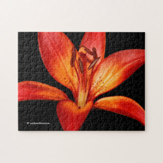 Beautiful Red Orange Asiatic Lily Gran Paradiso Jigsaw Puzzle