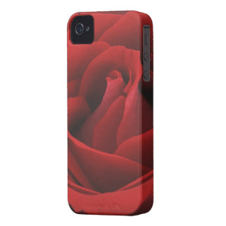 Beautiful Red Rose Blackberry Bold 9700/9780 Case iPhone 4 Cover