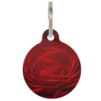 Beautiful Red Rose Pet ID Tag