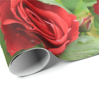 Beautiful Red Rose Repeating Pattern Floral