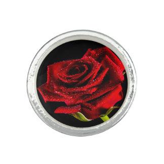 Beautiful red rose rings