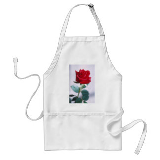 Beautiful Red Rose Standard Apron