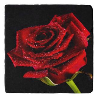 Beautiful red rose trivet