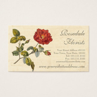 Beautiful Red Vintage Rose Old Fashioned Business Card
