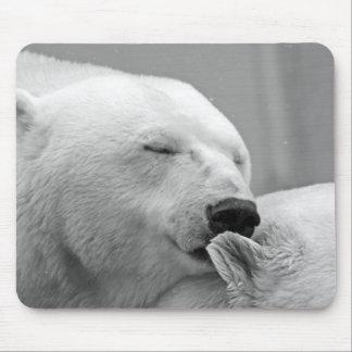 Beautiful resting polar bear mouse pad