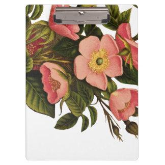 Beautiful Rose Flower Art Pretty Bold Clipboard