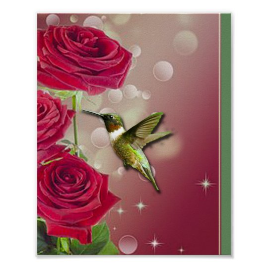 Beautiful Roses & Bird Poster