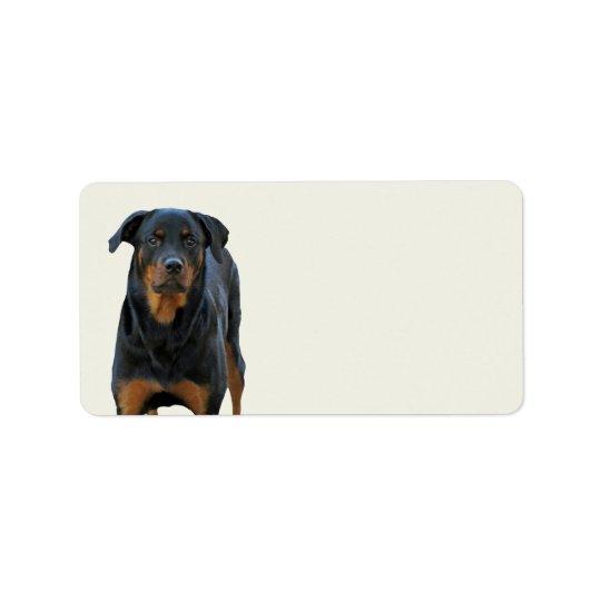 Beautiful Rottweiler Labels