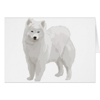 Beautiful Samoyed Card