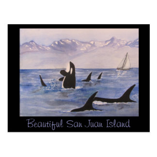 Beautiful San Juan Island Postcard